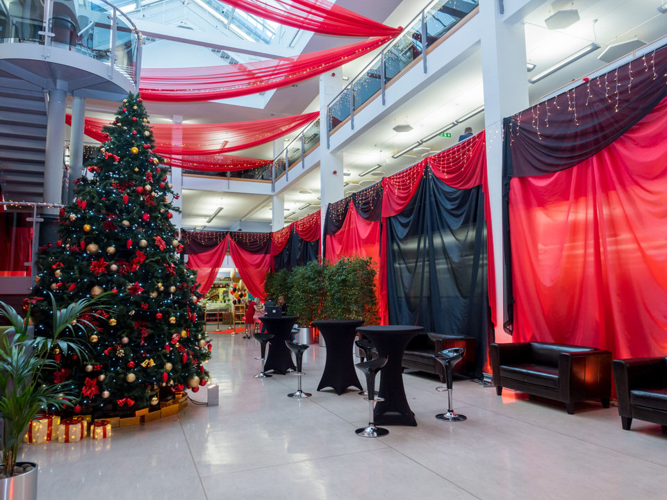 save - Professional Christmas Decorators Cost